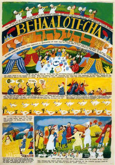 ONKELOS on BEHAALOTHECA