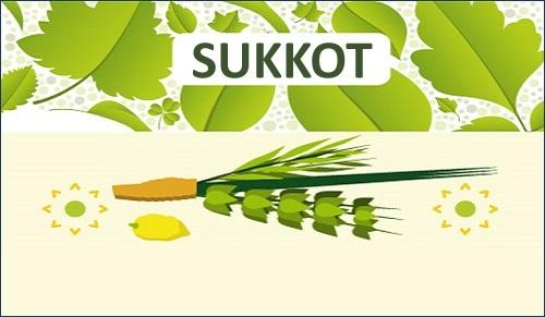 InfographicSukkotSukkah500x291-EN